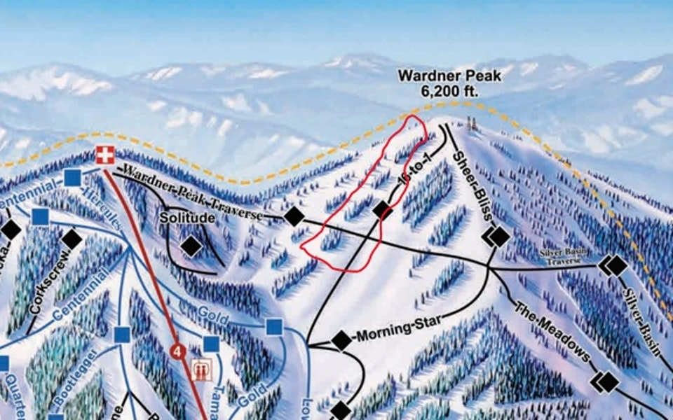 Wardner Peak avalanche