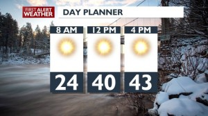 DAY PLANNER FOR FEBRUARY 20