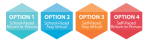 Virtual learning options