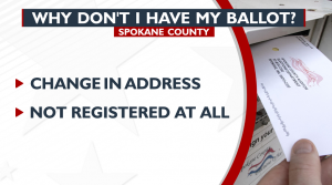 Why don't I have my ballot?
