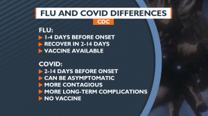 Flu and COVID differences