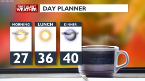 Wed Dayplanner[1]