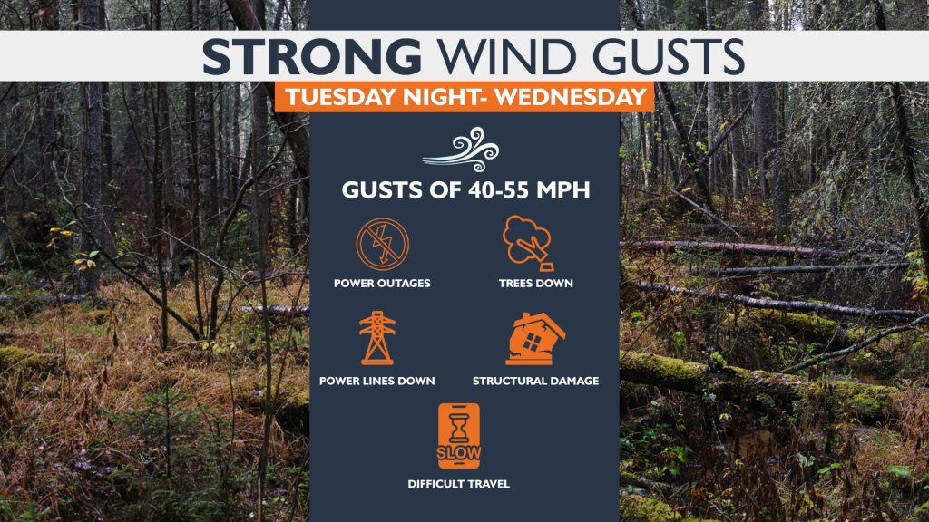 Wind Gusts 55