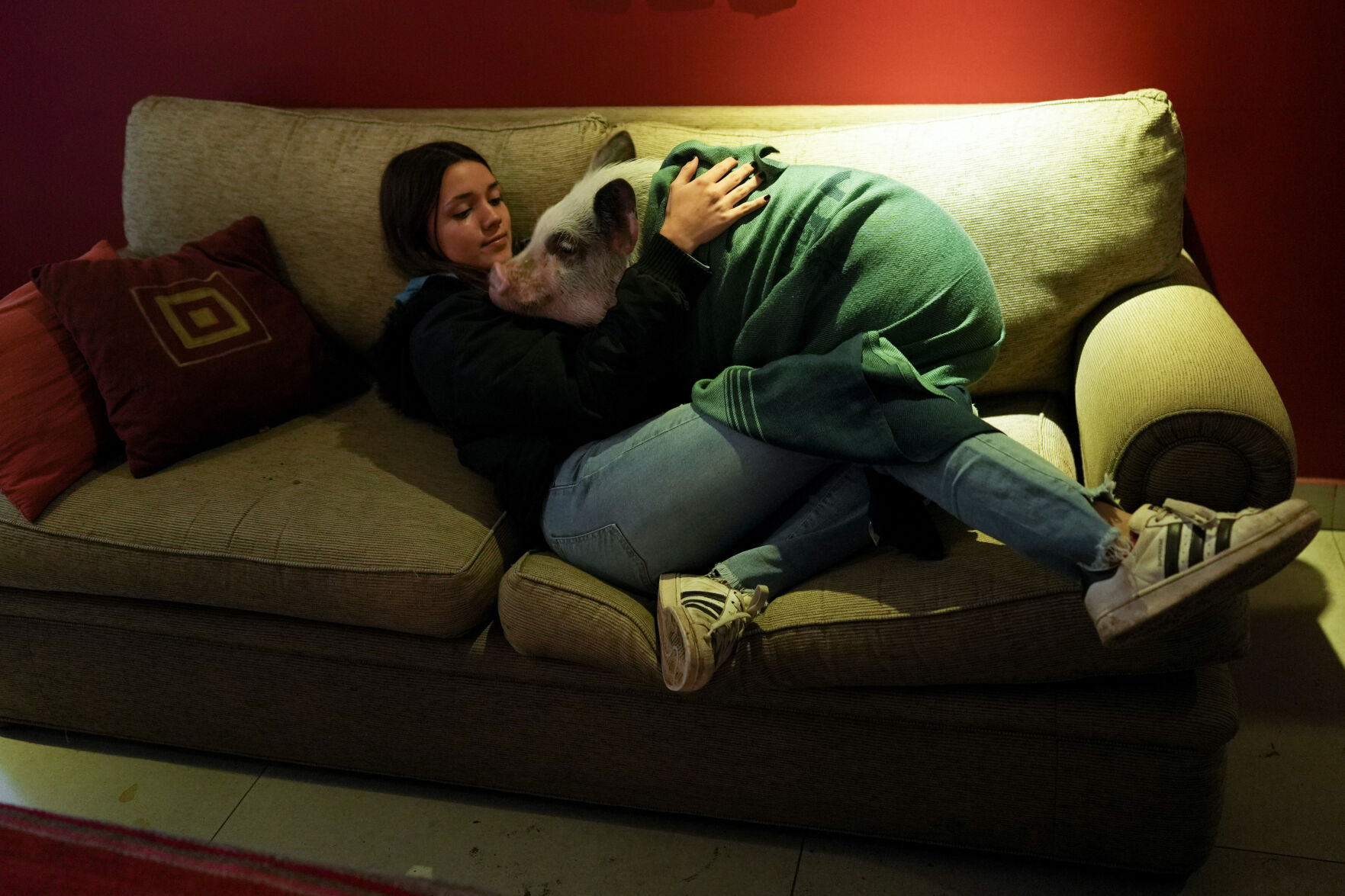 <p>Luciana Benetti, 16, embraces her pet pig Chanchi at home in Buenos Aires, Argentina, Saturday, Sept. 4, 2021. Benetti found her plans for a big traditional 15th birthday party scrapped due to the COVID-19 pandemic last year. In its place, her parents gave her a pig, which turned out to be a loyal and loving companion. (AP Photo/Natacha Pisarenko)</p>