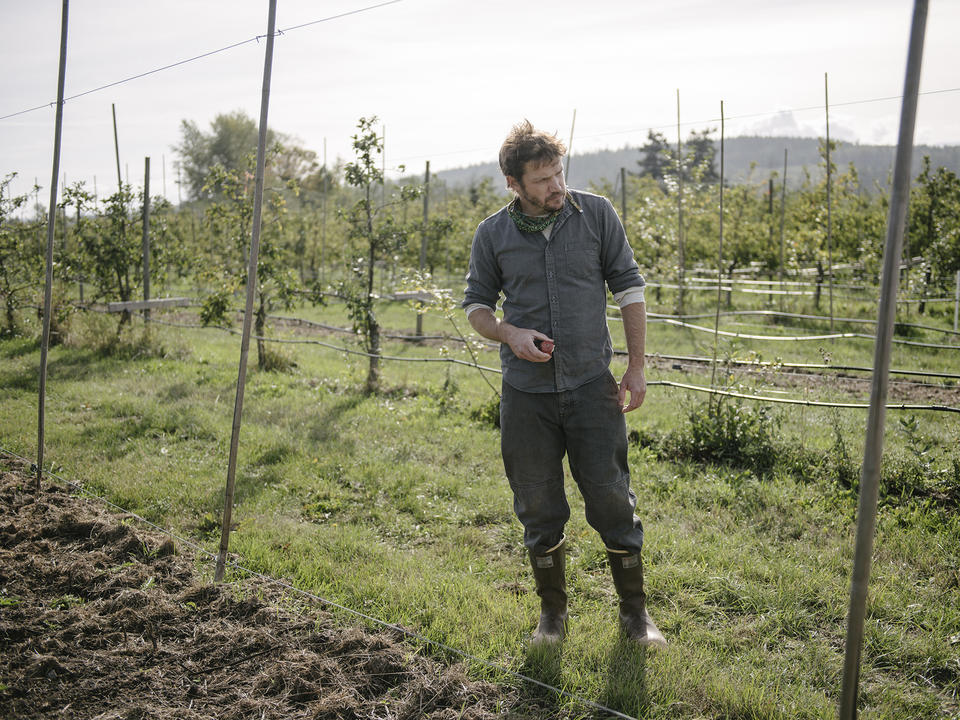 Cider Climate In Text 2